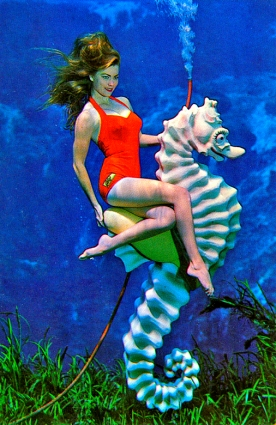 15_09_07 4 FL Mermaid