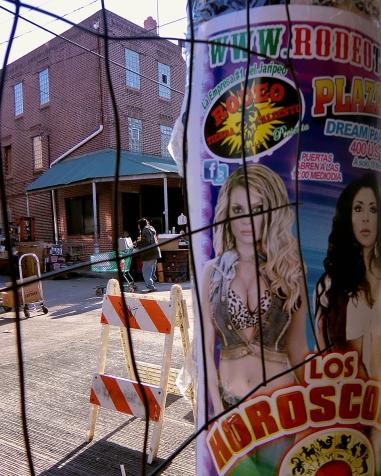 16_05_06 14 Karen Benson Market Walker